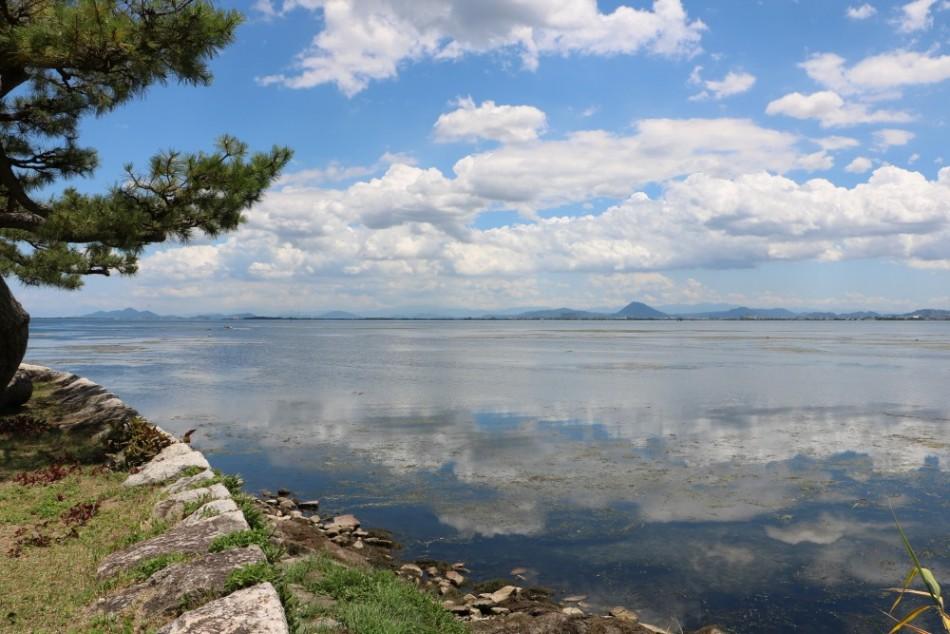琵琶湖の水面